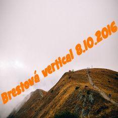 Vertikal Brestová
