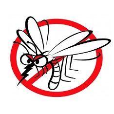 Ochrana před hmyzem a klíšťaty